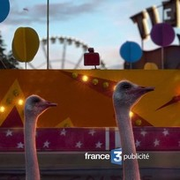 France 3 TV Idents 2013