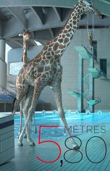 nicolas deveaux,nicolas deveaux athleticus,nicolas deveaux girafe,nicolas deveaux arte,nicolas deveaux youtube,giraffes,diving giraffes,diving giraffes in france,diving giraffes real,diving giraffes vimeo,giraffes diving into a pool,giraffes diving into swimming pool,olivier militon,5m80,5m80 nicolas deveaux,5m80 youtube,original music,original soundtrack