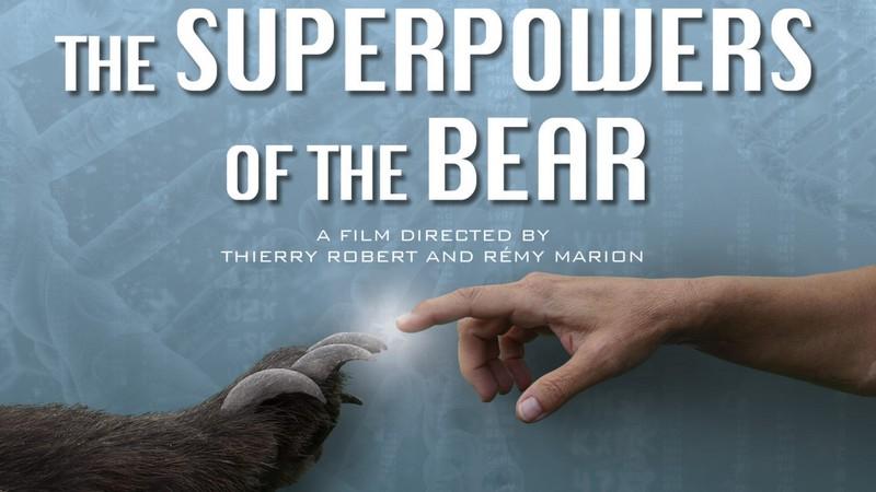 Filmography, Olivier Militon